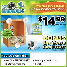(Kk,mom&i)(u can watch whats going on inside with the clear walls and see baby birds! Cool!) MY SPY BIRDHOUSE