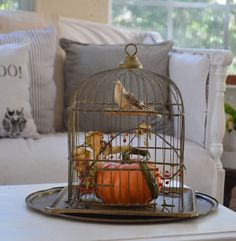Let's Add Sprinkles: Fall Inspiration On A Warm Day Beachy Room, Fall Vignettes, Faux Pumpkins, Antique Stores, Halloween Decorations, Fall Decorations, Autumn Inspiration, Decorating Blogs, Bird Cage
