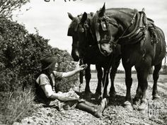 A Farmer Takes a Break with His 2 Horses after Ploughing His Field, 1934 Photographic Print Horse Pictures, Old Pictures, Old Photos, Vintage Photos, Farm With Animals, Animals And Pets, Vintage Horse, Vintage Farm, Beautiful Horses