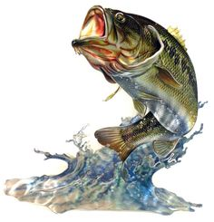 JQ Bass 3D Steel Reflective Wall Art For $58.99