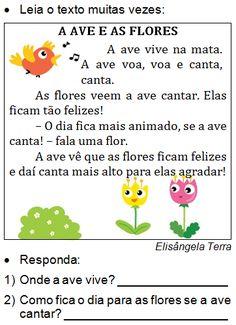 Texto A AVE E AS FLORES, de Elisângela Terra