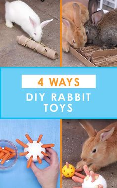 4 Ways To Recycle Your Stuff Into Rabbit Toys