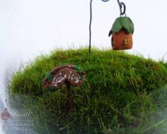 Мой новый маленький мир _ На этот раз крошечный.  _______ #маст_НатаН #моймох #минидомик #минидомики #флорариум #мох #зеленый #forest #moss #green #mymoss #fairyhouse #fairygarden #Fairies #florarium