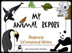 ANIMAL REPORT: Writing to Inform {with 20 Photos} Includes writing frames, organizers, and vocabulary cards, and extension ideas, too! This set should help your kids get started with their first real report to meet common core standards for informative and explanatory writing. You provide the books or use the internet to research! Over 47 pages