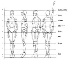 Drawing Female Body Proportions Rule of proportion the human body - figure drawing - martel . Fashion Figure Drawing, Human Figure Drawing, Figure Drawing Reference, Drawing Practice, Fashion Model Drawing, Drawing Lessons, Drawing Tips, Human Body Drawing, Human Anatomy Drawing