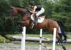 How To: Improve your jumping position « HORSE NATION | look how steady that leg is, read this article it's a pretty good read.