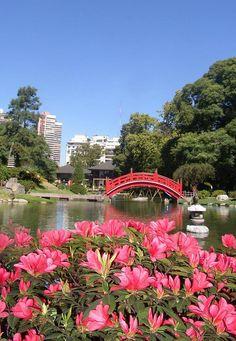 SMELL Jardín Japonés de Buenos Aires. Argentina springtime. @rothcheese #AdventureAwaits