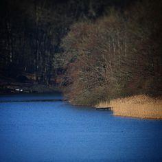 Forår over Søholm Sø #beautiful #outdoor #nature #landscape #worldunion #igers  #danmark #picoftheday #photooftheday #instagood #instamood #instadaily #assens #assensnatur #visitassens #visitdenmark #instapic #friluftsliv #fynerfin #vildmedfyn #mitassens