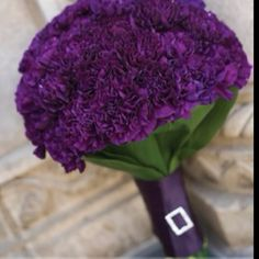 purple carnation bouquet Simple, low cost, and looks pretty cool, I'm thinking this for the bridesmaids and mine with a few different flowers in it but still having the purple carns