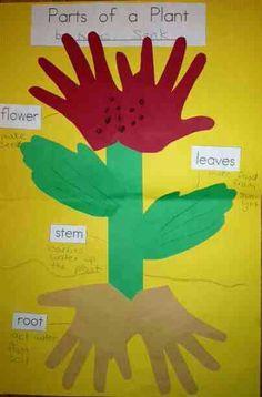 preschool hand print plant
