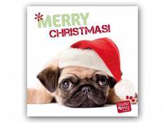 Hunderassen WeihnachtskartenMyrna Weihnachtskarte: Mopsige Weihnachten -  Welpe