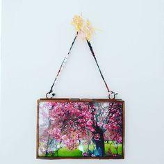 【lycoris02】さんのInstagramをピンしています。 《Je me souviens d'un vent glacial. Nous étions au mois d'avril, au #ParcDeSceaux pour admirer les #FleursDeCerisiers. Une beauté éphémère. Dejeunant sur l'herbe fraîche, discutant avec inconscience, se promenant entre les arbres. Non loin, un spectacle japonais venait égayer notre journée. ~ Memorie ~  #DomaineDeSceaux #Sakura #JapanAtmosphere #Hanami #花見 #桜前線 #HanamiInParis #桜お花見 #桜 #櫻 #さくら #JapanStyle #2015年4月》