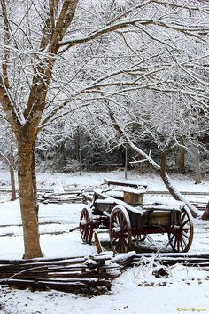Snow-covered wagon along Glades Road in Gatlinburg, Tennessee,- Gordon Brugman