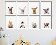 Australian Animal Print, Nursery Decor, Baby Animals Set 8, Baby Animals Print, Koala, Kangaroo, Emu, Bilby, Nursery Wall Art, Printable Art