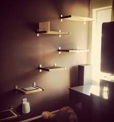 IKEA Hack wall mounted cat tree/shelves