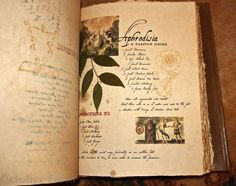 grimoire design, After I make my Book of shadows (it's a secret how I'm gonna do it) I was thinking of making a Grimoire a little like this, but with more color