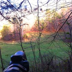 Looking out at turkeys while deer hunting.