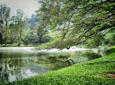 Taman Tasik Taiping in Taiping, Perak by Mohammad Khairul B. Taiping, River, City, Outdoor, Outdoors, Cities, Outdoor Games, The Great Outdoors, Rivers