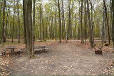 Awenda Provincial Park Ontario Canada Ontario Parks, Canada, Places, Outdoor Decor, Image, Lugares