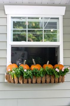 Put little pumpkins in a window box