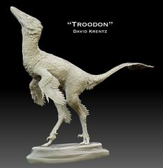 The hands of Troodon were specialized for grasping in a certain way. They were also very fast. Their hind legs were long and elongate lower parts of the legs which allowed them to move very rapidly and, of course, to escape predators that were larger than them.