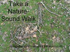 A good listener is almost always a good speaker and communicator- take a nature sounds walk.