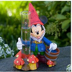 "Mickey Mouse Gnome Rain Gauge by Disney. $30.72. This highly decorative Mickey Mouse gnome rain gauge stands about 6"" tall and will decorate any yard or garden with flash and flair. Rain gauge is glass and easy to clean.                                                 Add a sparkle to your yard with this decorative gauge. Don't forget to add a couple of Mickey and Minnie flower pots or large Mickey gnome."