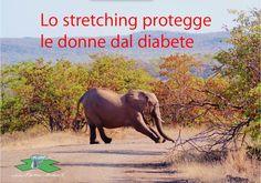 Stretching, diabete e donne