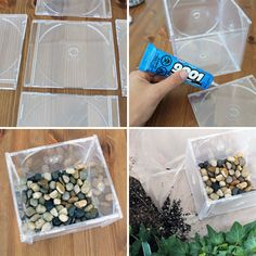 Contenedor o maceta para plantas. Esta última idea se refiere más que nada al uso de las cajas de CD's. En efecto, si tienes discos viejos es muy probable que también tengas las famosas cajas de plástico que, dicho de paso, siempre se rompían. Pues las puedes usar como maceta o contenedor para plantas. Para esto basta pegarlas de tal forma que formes un cubo, hacerle un agujero para drenar el agua y colocar un fondo de piedras por ejemplo. Luego lo rellenas de tierra y planta algo.