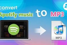 Rip Copy Protected DVD to PC with 1Step DVD Copy - iVoicesoft.com Digital Rights Management, Music Converter, Windows System, Windows Operating Systems, Music Files, Explain Why, Your Music, Accounting, Coding