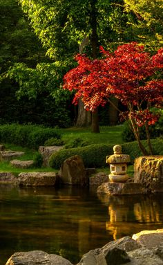 Sunset in Kyoto Gardens in London Park by  Joseph...