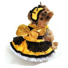 Honey Bee Darlin' Dog Costume at BaxterBoo