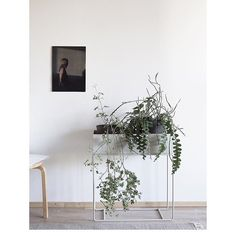 ferm LIVING Plant Box in light grey: http://www.fermliving.com/webshop/shop/green-living/plant-box-grey.aspx