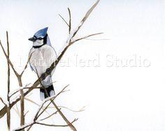 Winter Blue Jay  Watercolor 8 x 10 Fine Art by NatureNerdStudio, $18.00