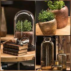 BLACK&BROWN#Váš rozprávkový svet#Príbehy skryté v knižniciach#📚📚📚#čarovná jeseň#🍁🍂🍁#zababúšiť sa#relaxovať#útúlný kútik#🍁🍂🍁#masívne drevo#kožušiny#svietniky#doplnky#séria plná prírody#Váš príbeh BLACK & BROWN#by#Jolipa#jline#colections#home#black#and#brown#natural#wood#leathers#homedesign#Bratislava#@a.keramika.cersa#🍁🍁🍁#