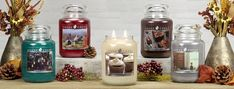 Goose Creek, Esschert Design, Mason Jars, Decor, Decoration, Mason Jar, Decorating, Glass Jars, Deco