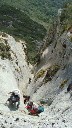 Pedra do Cachorro - 1.200 metros de altitude a nível do mar.  São Caetano do Sul (PE)  Brasil