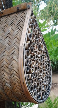 how to build a native bee house