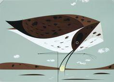 charlie harper art | Announcing – Charley Harper at Castor and Pollux