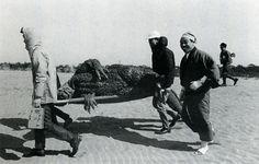 Godzilla down, repeat, Godzilla down. Mothra vs. Godzilla, 1964
