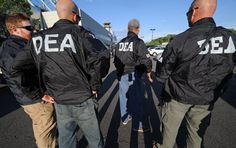 DEA Fail: US Narcs Kept Jobs Despite Actually Trafficking Drugs - If you're looking for job security, newly revealed documents show the US Drug Enforcement Administration will look the other way on pretty much anything.