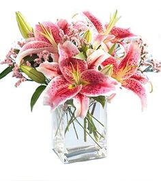 Order AF Stargazer Lily Bouquet flower arrangement from Arnold Florist, your local Arnold, MO florist. Send AF Stargazer Lily Bouquet floral arrangement throughout Arnold, MO and surrounding areas. Stargazer Lily Bouquet, Stargazer Lily Wedding, Wedding Flowers, Funeral Flowers, Wedding Bouquet, Wedding Dresses, Tropical Wedding Centerpieces, Lily Centerpieces, Centerpiece Ideas