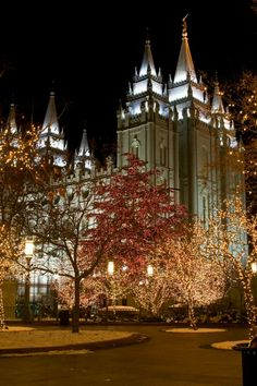 Salt Lake temple LDS. I want to go see this place one day. Please check out my website thanks. www.photopix.co.nz