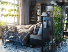 A nature lover's bedroom...plants in the window and vines growing up on a clothes rack