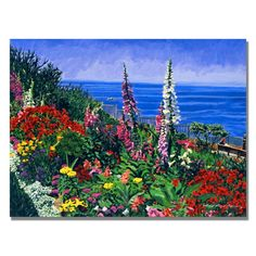 Trademark Art Laguna Niguel Summer by David Lloyd Glover Framed Graphic Art on Wrapped Canvas & Reviews | Wayfair.ca
