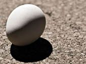 How to make a bouncing egg.  Use a hard boiled egg & vinegar.  Shows importance of calcium