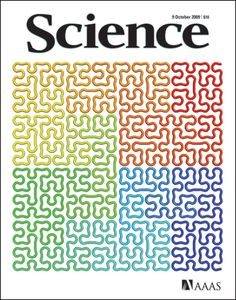 Fractal globule architecture packs two meters of DNA into each human cell, avoids knots: Cover of Science - October '09: While a grad student Erez Lieberman-Aiden, with a reverse engineering technique calle Hi-C described a chromosome as a fractal globule, whose noodle like coils of DNA are untangled like Nissin Top Ramen Noodles. via umass.edu #Human_Genome #Lieberman_Aiden #Ramen_Noodles