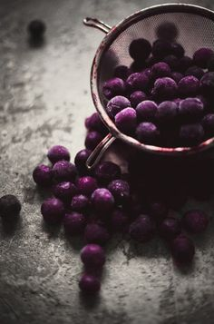 Purple Blueberries ~