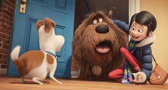 The Secret Life Of Pets Pets Movie Kid Movies Pet Trailer