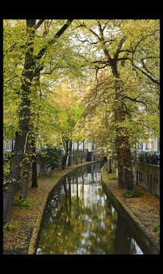 Beautiful tree lined canal in Utrecht, Netherlands.